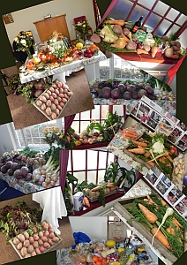 Collage of harvest produce photos